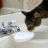 Sink Drink - Turns a Faucet Into a Fountain for Your Cat