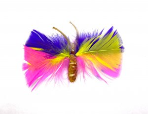 Buttermoth Multi-Colored - 2 Pk